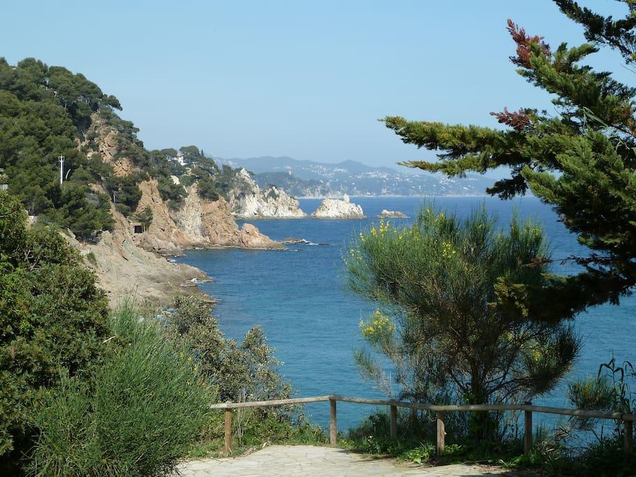 Vista desde Ermita San Francesc