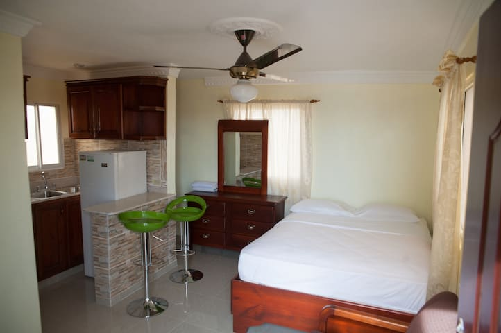 Spacious Studio,Terrace, CityView Free High Wi-Fi - Santo Domingo Este - Wohnung