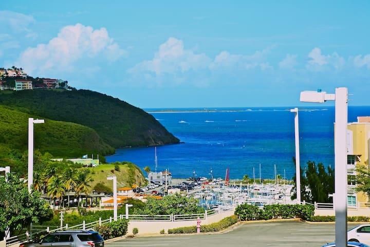 ✦ Oceanview 3/2 Apartment   Pena Mar Ocean Club