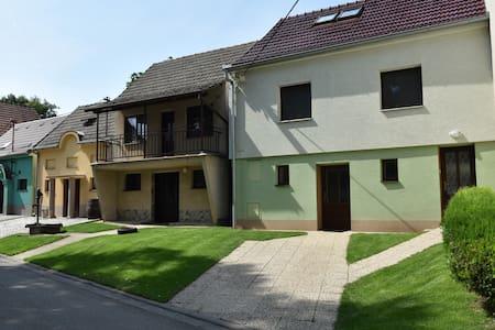 Pronajmu sklípek v Hovoranech - Hovorany - Σπίτι