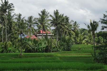 POOL VILLA, FAR FROM TOURIST CROWD - Tegalalang