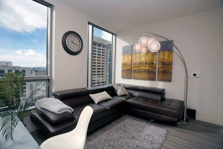 River North Waterside Condos 2BD/1BA 4