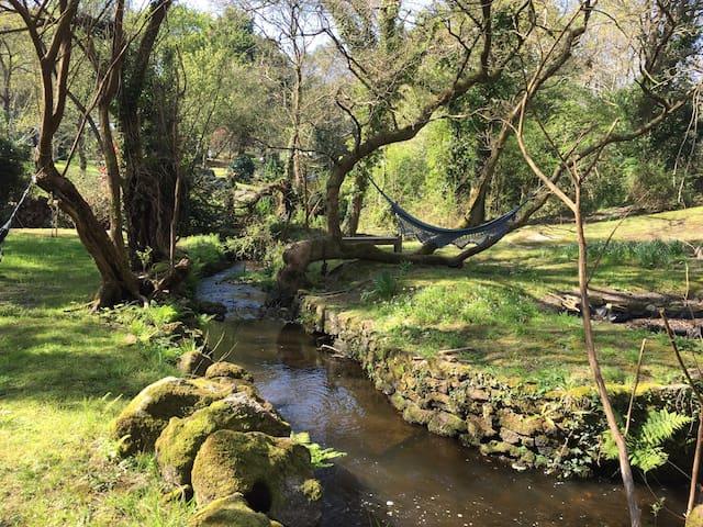 Longère en pierres debouts au bord d'un ruisseau