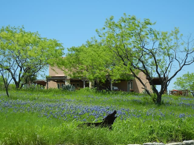 Private Entry 2 Rooms Bluebonnet Trail Ennis, TX - Ennis - Bed & Breakfast