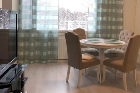 Nice 2 room apt - Lahti with WiFi internet 100 Mb