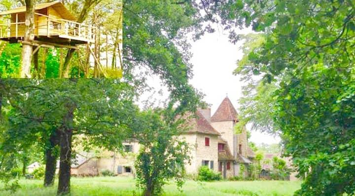 Vieux Manoir avec superbe cabane dans les arbres.