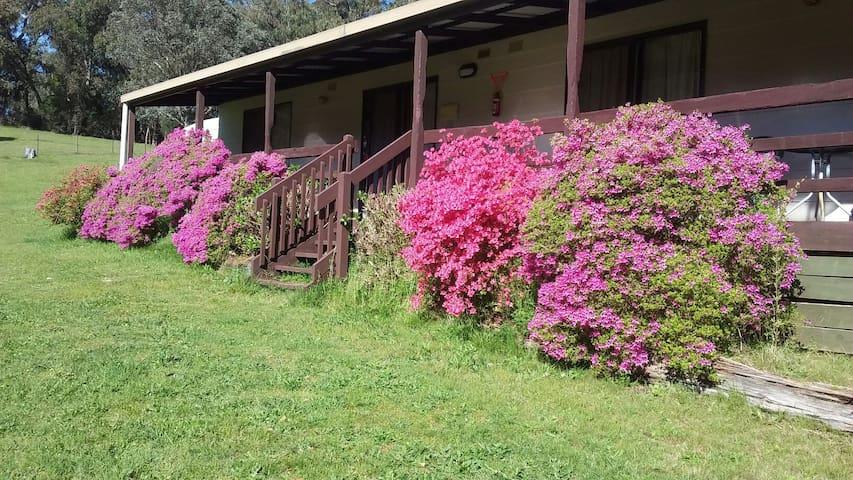 Cabin 3. Emerald Park Holiday Farm.