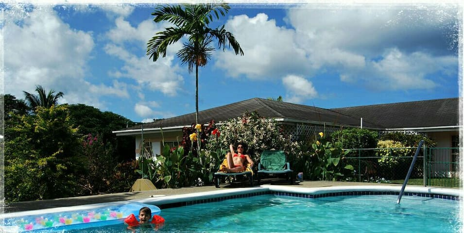 Turtleview Guesthouse Tobago Studio Apt #1
