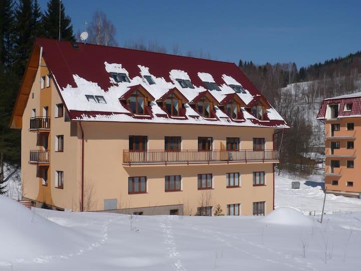 Apartmán 2+kk, 55 m2, Jeseníky, Horní Lipová