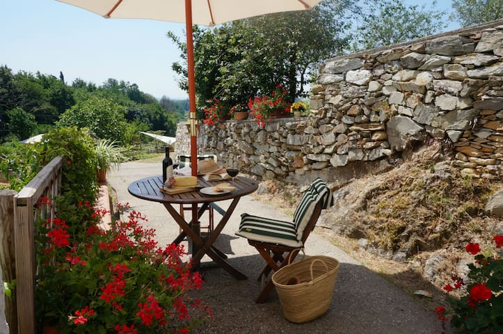 Among the olive trees in Vicopisano - Tuscany - Vicopisano - Apartamento