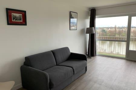 Appartement lumineux calme avec vue sur la Seine