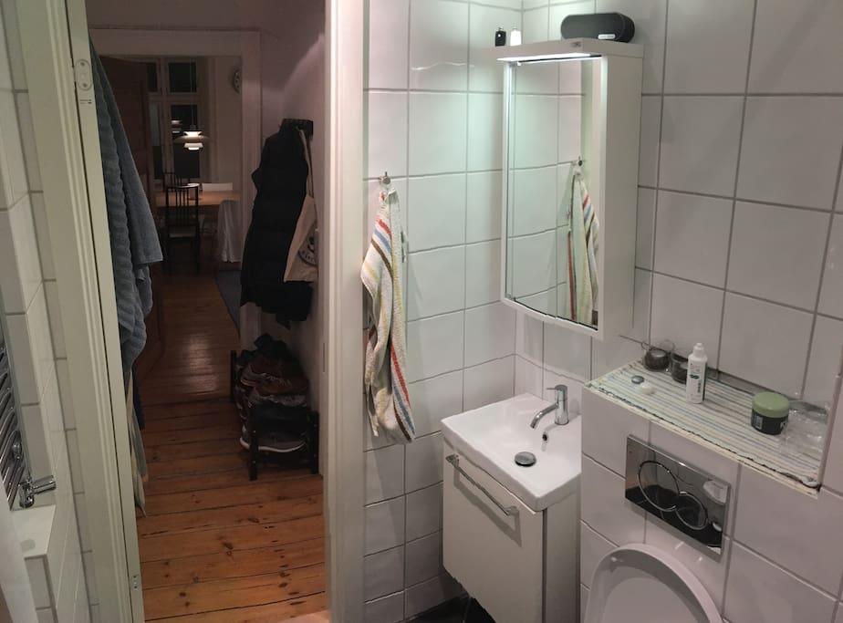 The bathroom, hall and livingroom