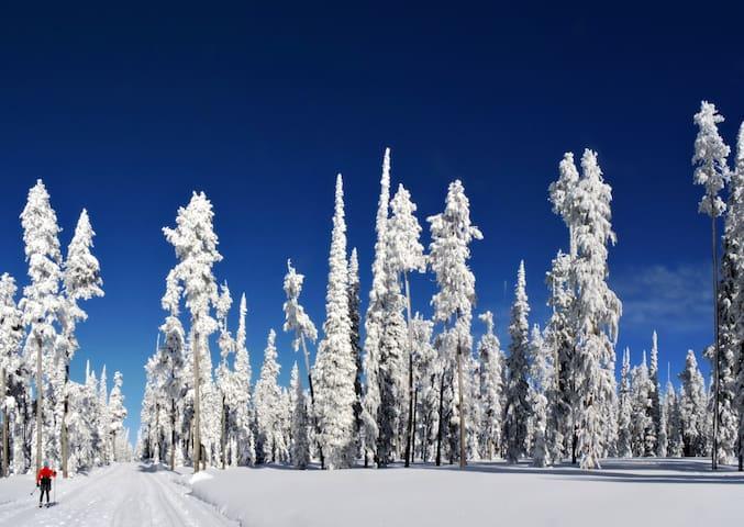 Kirmoitalo : Room-5 in Salla, the arctic Lapland