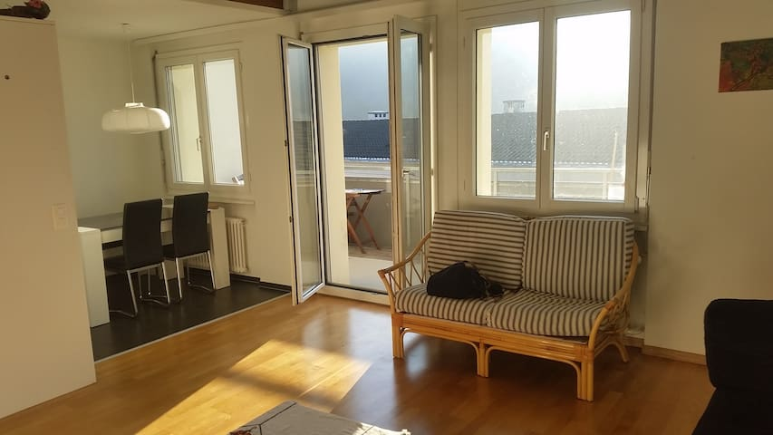 Private room in Lucerne - Luzern - Apartment