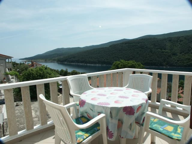 One bedroom apartment with terrace and sea view Duga Luka (Prtlog), Labin (A-2335-d)