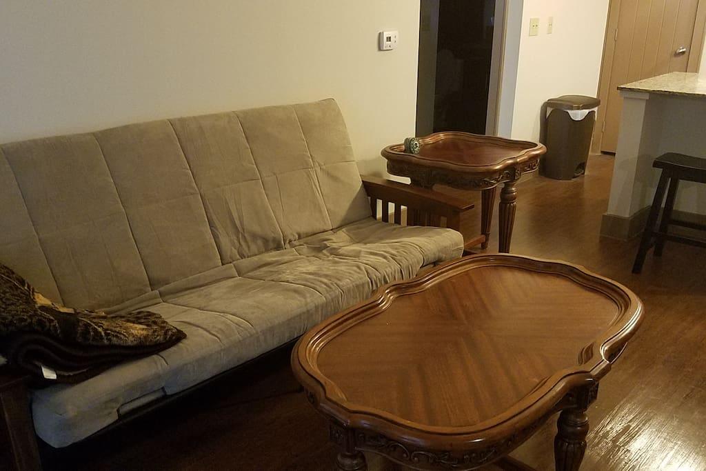 Living Area with Futon & Comfy Throw