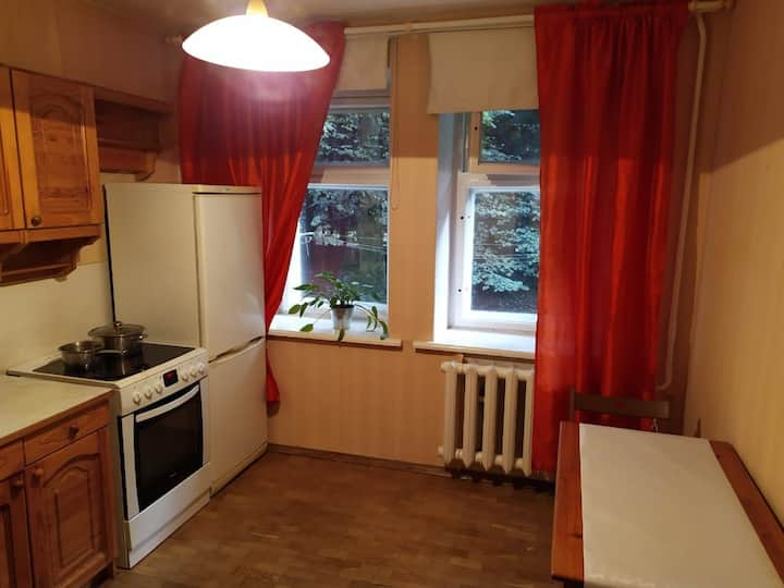 Cozy apartment in Pushkin near SPB