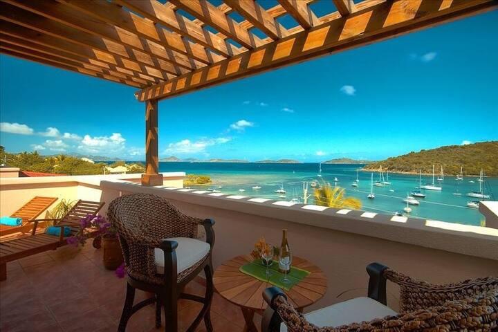 Fantastic views of Cruz Bay! - Cruz Bay - Apartment