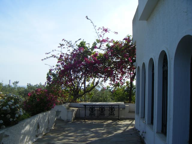 Villa Rikia - Tragana - Villa
