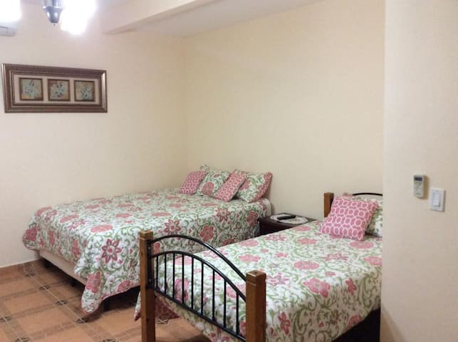 Habitación No 5 (2 camas 1 sofá-cama).