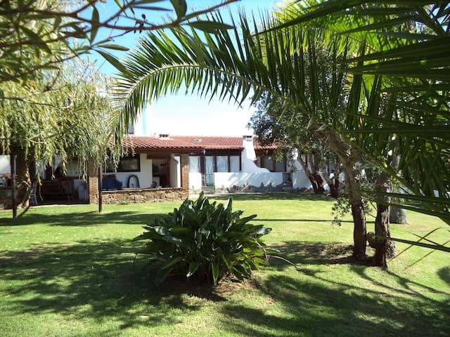 Casa do Jardim - Odeceixe - House