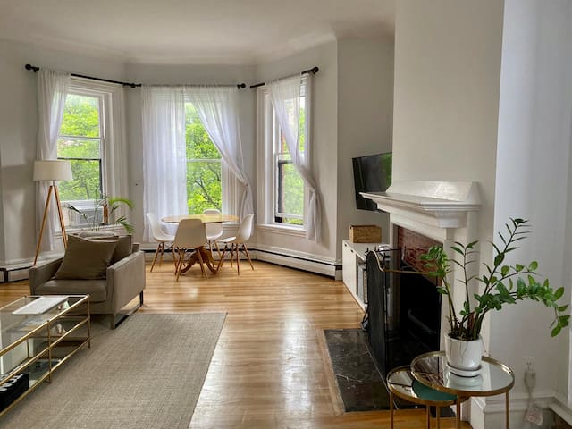 Beautiful and Sunny 1BR in Back Bay