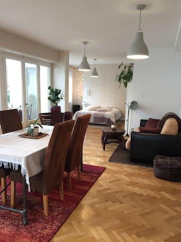 Quartier Orangerie, magnifique Loft avec terrasse