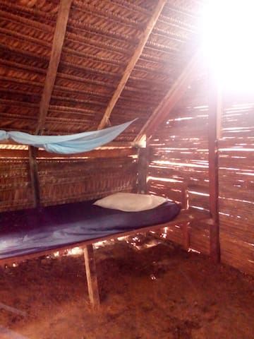 Camping space 2 USD/night - Tabatinga