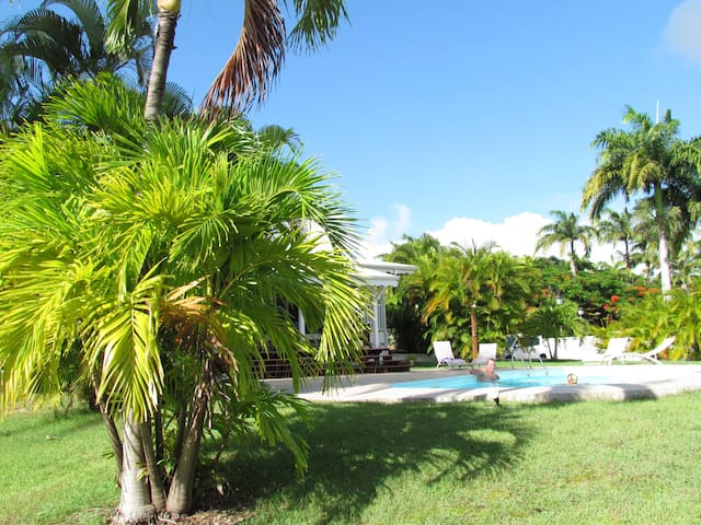 Bed and Breakfast Villa CAP CREOLE