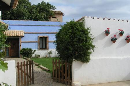 Antinguo Molino de Harina rehabilitado - Muel - Dům