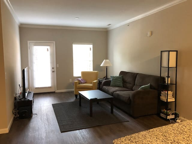 2 Bedroom Apartment- Raleigh