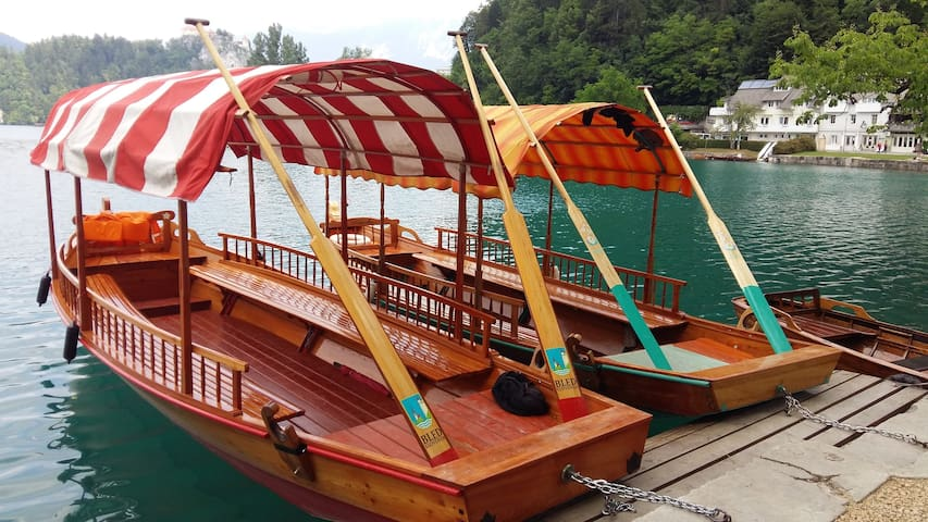 Boats or pletnas