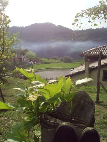 Bed & Breakfast en Fresnosa, Anayo. Asturias - Anayo