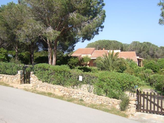 CHARMING VILLA A 100 METRI DAL MARE - Conca Verde - House