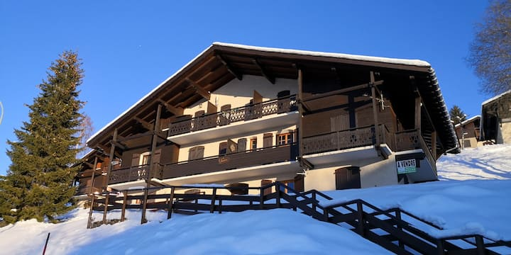 Apartment with one bedroom in Crest-Voland, with wonderful mountain view and furnished terrace - 10 m from the slopes
