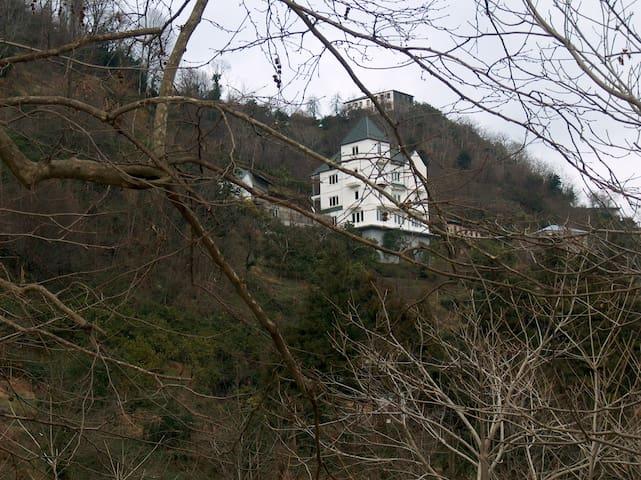 Солнечный Дом в зеленых горах - Batumi
