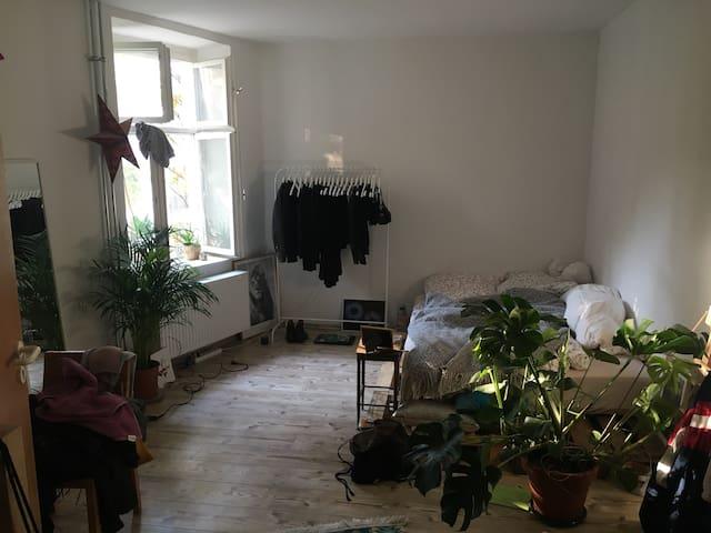 Schönes Zimmer im zentralen Friedrichshain