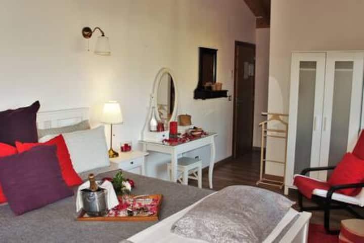 room Serra D`Arga
