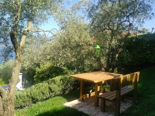 Secluded table, ideal for breakfast and outdoor dining