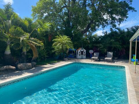 Beautiful Backyard Oasis and Swimming Pool
