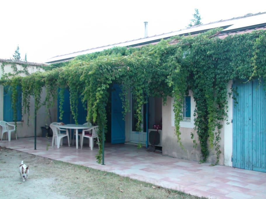 terrasse ombragée et jardin privatisé