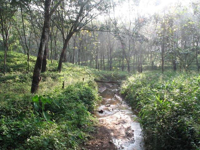 Arayanpara Homes - Vechoochira - Bungaló