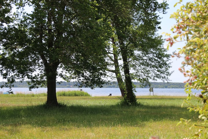 Maison Le Moutchic première ligne  Lac de Lacanau