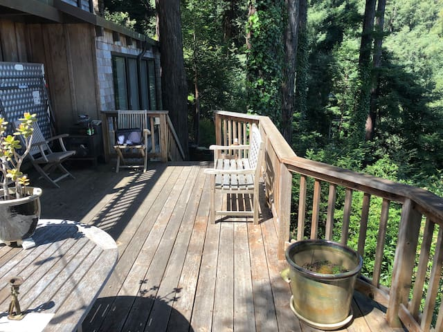 Our relaxing deck with a view of the mountain.  Great place to relax when not hiking or biking.  This is a part of the accessible common areas of our beautiful Marin retreat.