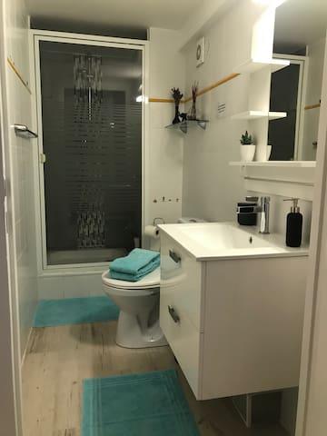 Salle de bain dans la chambre avec WC