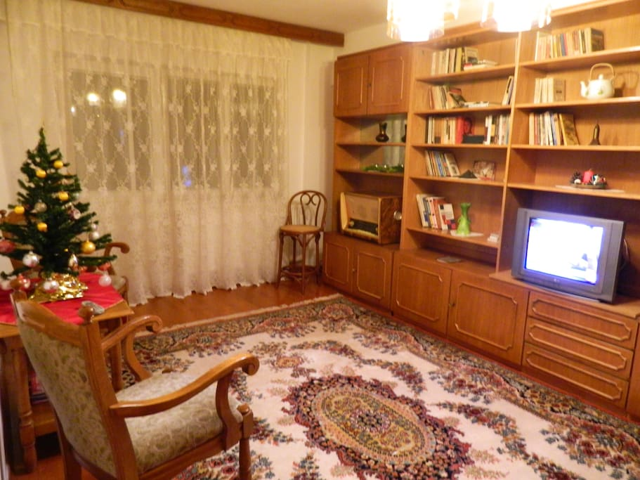 Elegant & warm living room and balcony with a view.TV, Radio, 2 armchairs, coffee table on wheels, books, bar-stool, comfy extendable couch, reading wall-lights, Persian rug and rich paintings.