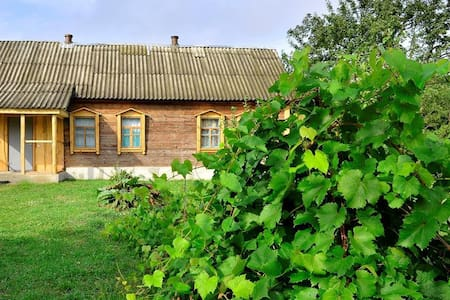 Этнический украинский дом в лесу