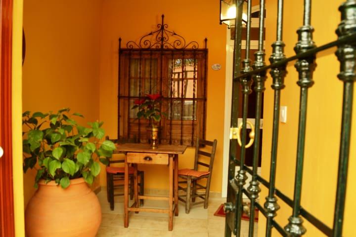 SEVILLA OLE - Sevilla - Appartement