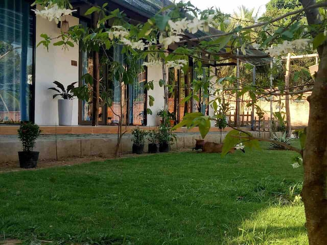 Quiet bungalow, close to nature in Phu Quoc