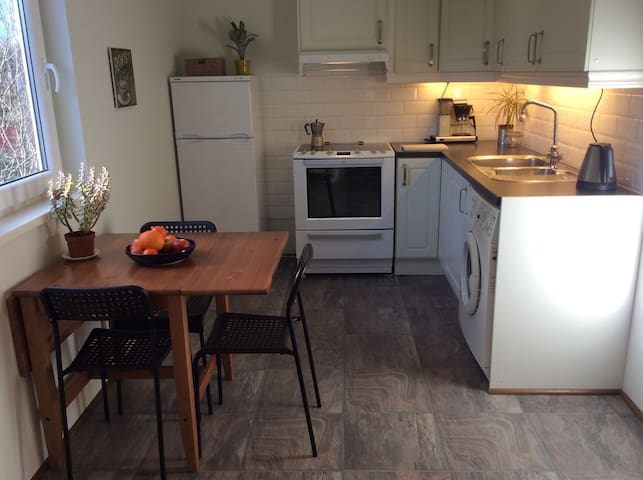 Studio apartement in fjords heart - Bekkjarvik - Appartement